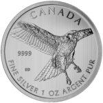 Canadian Birds of Prey series
